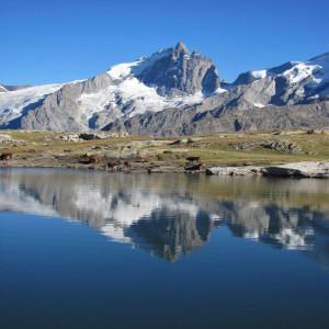 la Meije et lac Noir